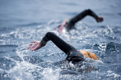 Unknown Swimmer at sea. Stock Images