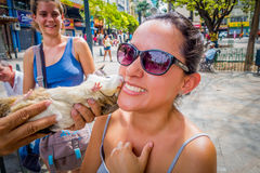 Unknown tourist getting a kiss from guinea pig in Stock Photography