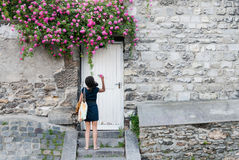 An unknown young woman picks a rose from a garden wall Stock Image