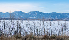 Unkräuter, gefrorener See und entfernte hohe Berge Lizenzfreies Stockfoto