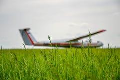 Unkraut gerichtet auf Flugplatz stockfotografie