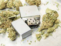 Unkraut-Marihuana-Topf, Schmutz-Hintergrund mit erstaunlichem Detail Lizenzfreies Stockbild