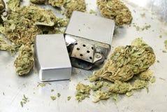 Unkraut-Marihuana-Topf, Schmutz-Hintergrund mit erstaunlichem Detail Stockfoto
