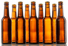 Unlabeled beer bottles standing two rows deep Royalty Free Stock Image