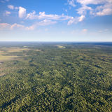 Unlimited forest terrain, top view Royalty Free Stock Photo