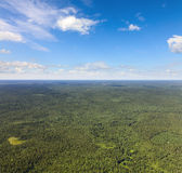 Unlimited forest terrain, top view Stock Photo