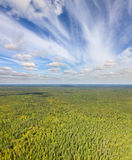 Unlimited forests, view from above Royalty Free Stock Photography