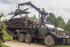Unloading firewood from the truck in the Leningrad region of Russia. Stock Photos