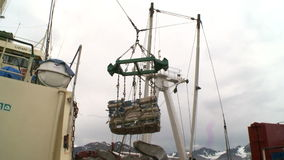 Unloading of fish from the fishing trawler on the transport vessel. Norvegian sea stock video footage