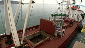 Unloading of fish from the fishing trawler on the transport vessel. Norvegian sea stock video