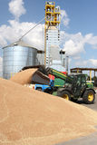 Unloading grain. Grain loading on a farm, a tractor warehouse Royalty Free Stock Photos