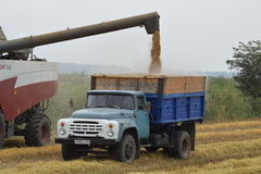 Unloading grain from a combine into a truck. Royalty Free Stock Image