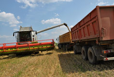 Unloading grain silo harvester Royalty Free Stock Photos