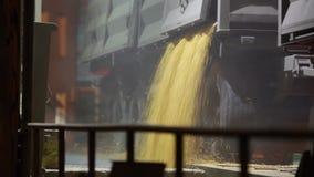 Unloading grain trucks at elevator on elevating hydraulic platform unloader at night. Grain crops transshipment at big. Unloading grain trucks at elevator on stock video footage