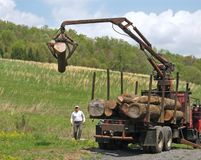Unloading logs from truck. Man watches as logs are unloaded using crane with jaws Stock Images