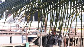 Unloading ship on Balis island, big motor boat, blurred background, no faces. Palm. Business cargo, logistics. stock video