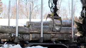 Unloading smaller logs by threes. While larger logs are by twos and some can only carry one log. Hydraulic instrument. Machine industry stock footage