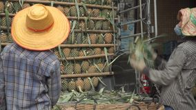 Unloading truck full of pineapples in Bangkok. Close up shot. Clip stock video