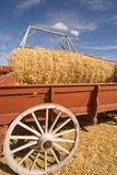 Unloading the wagon of wheat. Stock Photos