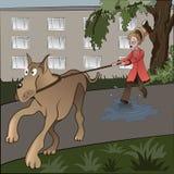 Unlucky dog-walker. royalty free illustration