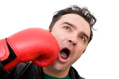 Unlucky man. Young man being punched with boxing gloves on white Stock Images