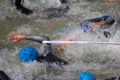 Unlucky swimmer. Stock Images