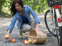 Unlucky woman with rolled apples. Organic apples spilled from the basket on the floor Royalty Free Stock Photo