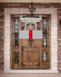 Unmanned Aircraft System UAV Quadcopter Drone Delivering Gift royalty free stock photo