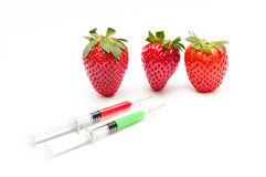 Unnatural strawberry. Red strawberry unnatutal and dangerous solated on white background stock photos