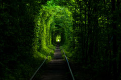 unnel de l'amour Photographie stock