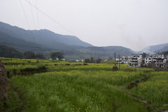 Uno de Huangshan Foto de archivo