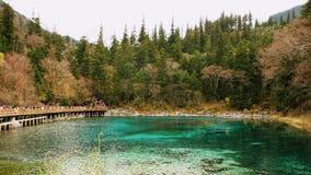 Uno de Jiuzhaigou's muchos lagos que reflejan el follaje de otoño en una tarde tranquila en el parque nacional del valle Jiuzha imágenes de archivo libres de regalías