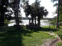 Uno de los muchos lagos en Orlando fotografía de archivo