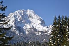 Uno de los picos de la montaña de Durmitor en invierno Fotos de archivo libres de regalías