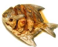 Uno de pescados fritos con la salsa de pescados Foto de archivo libre de regalías