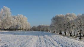 Uno dei giorni di inverno immagini stock