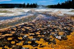 Uno dei molti paesaggi scenici del parco nazionale di Yellowstone, Fotografia Stock Libera da Diritti