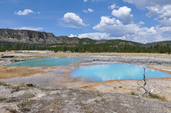 Uno dei molti paesaggi scenici del parco nazionale di Yellowstone, Immagine Stock