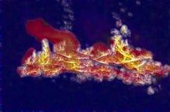 Uno di una serie di fiamme molto vive del falò Immagine Stock Libera da Diritti