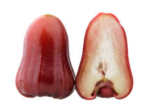 Uno e mezzo delle melarose rosse Immagini Stock Libere da Diritti