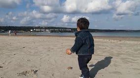 Uno e mezzo neonato di un anno che gioca con le palle dell'erbaccia del mare sulla spiaggia sabbiosa senza la gente, giorno soleg stock footage