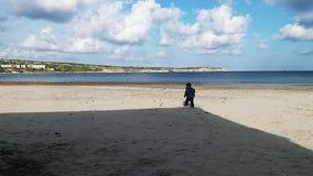 Uno e mezzo neonato di un anno che gioca con le palle dell'erbaccia del mare sulla spiaggia sabbiosa senza la gente, giorno soleg video d archivio