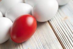 Uno rosso e molte uova bianche Fotografia Stock