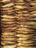 Uno scaffale del pesce affumicato fresco immagini stock libere da diritti