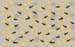 Uno sciame e un favo dell'ape su un fondo grigio Reticolo Fotografia Stock