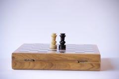 Uno scontro di due re Immagini Stock