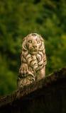 Uno scuplture di pietra del leone in una città rumena Fotografia Stock