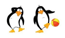 Uno sguardo dei due pinguini sopra Fotografia Stock Libera da Diritti
