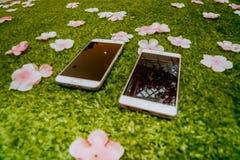 Uno smartphone delle coppie sulla terra Fotografie Stock
