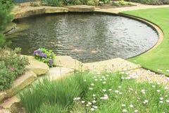 Uno stagno di pesci dell'oro nel giardino. Immagine Stock